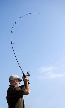 sidebar-fishon